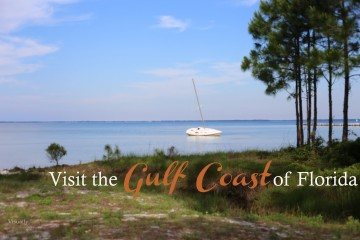 Visit the gulf 068
