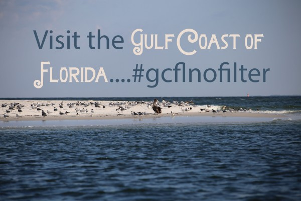 Visit the gulf 449