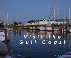 Visit the gulf 973