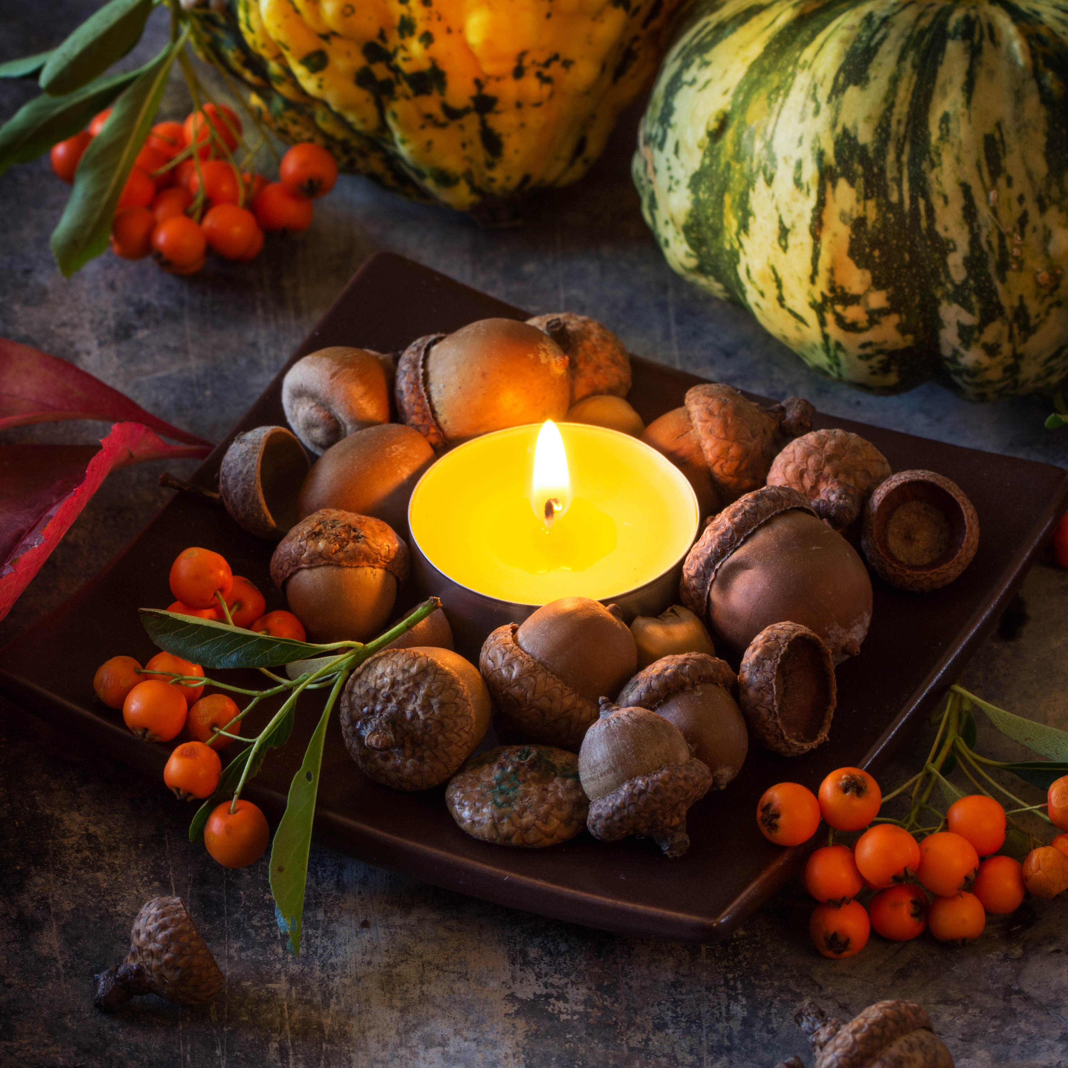 Pumpkins, nuts, berries and mushrooms chanterelle with burning candle. Square image.