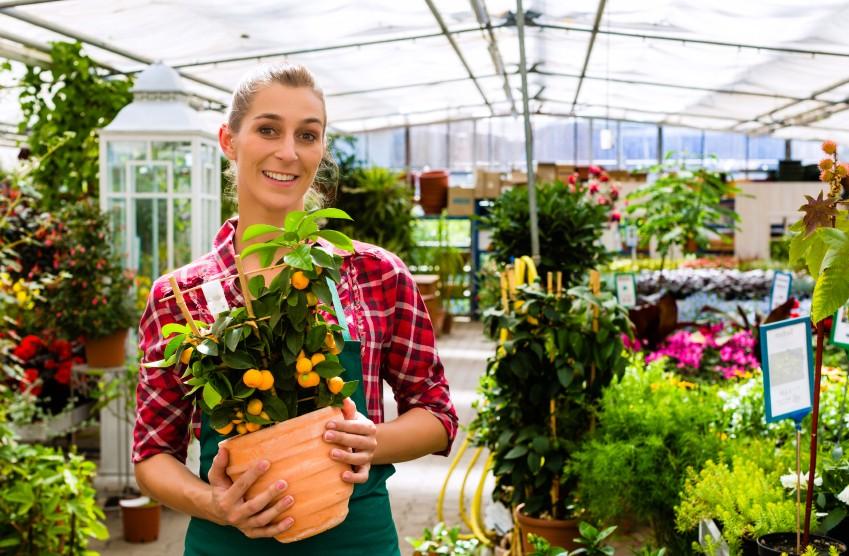 Female florist or gardener in flower shop or nursery
